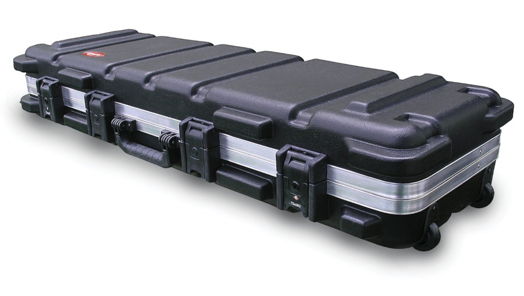 SKB Double Carry Case